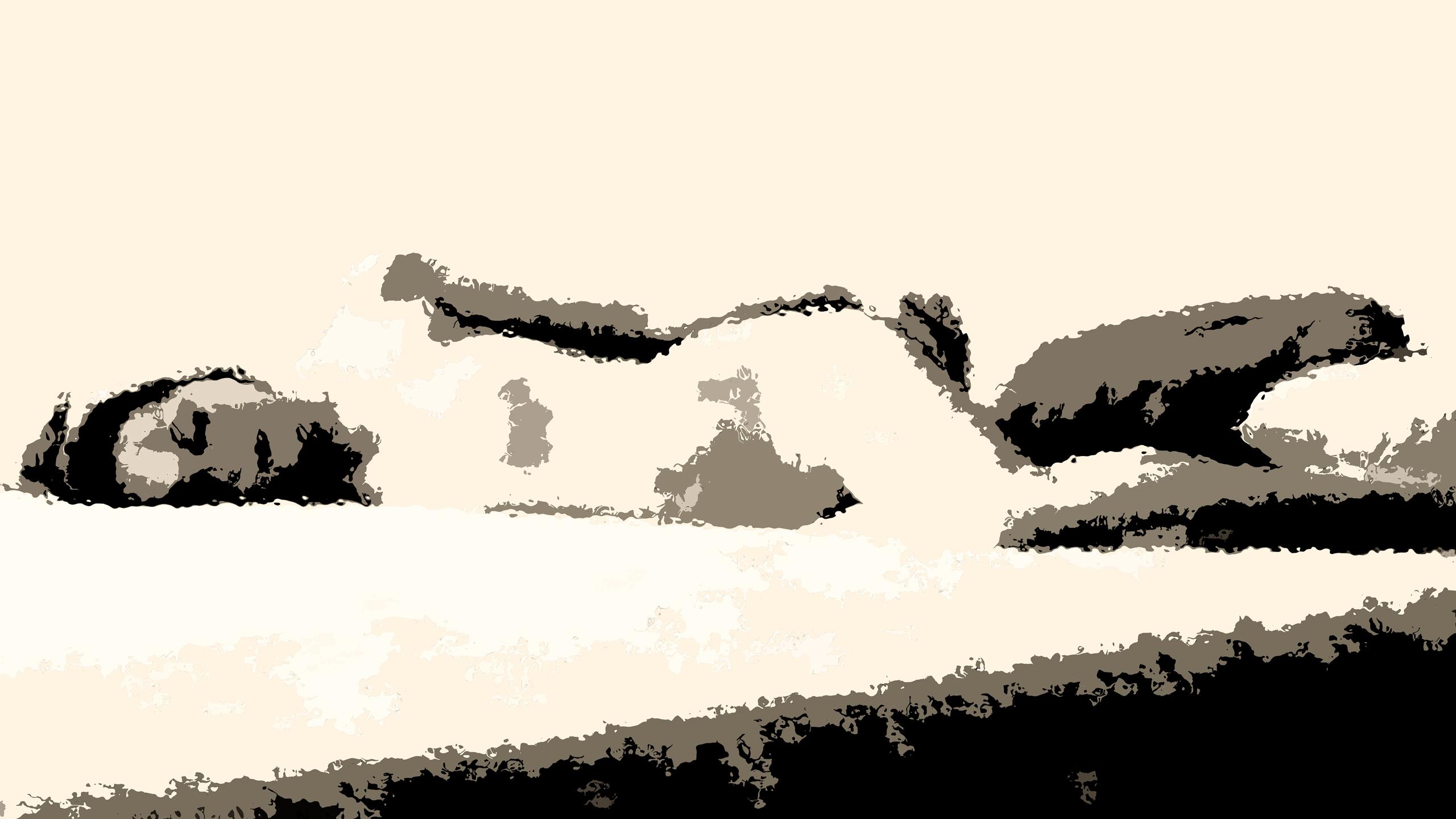 Cándida duerme / Kopi Luwak